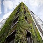 Logo del grupo Infraestuctura y techos verde – Jardines verticales
